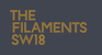 Mount Anvil - The Filaments logo