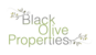 Marketed by Black Olive Properties