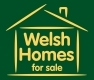 Welsh Homes For Sale