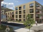 Notting Hill Housing Group - Camberwell Fields image