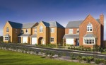 Morris Homes - Eden Fields image