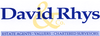 David Rhys & Co logo