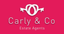 Carly & Co logo