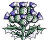 Scottish Highland Property Services Logo
