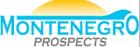 Montenegro Prospects d.o.o. logo