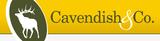 Cavendish & Co.