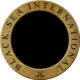 Black Sea International Logo