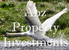 ABZ Property Investments logo