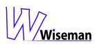 Wiseman logo