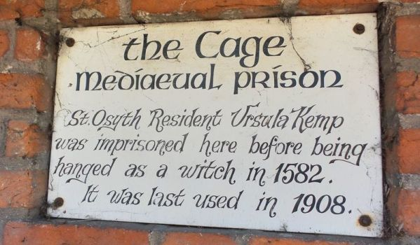History of The Cage.