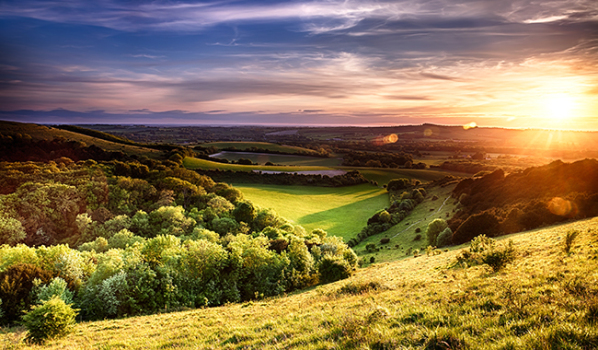 Sunset on Winchester hill in the South Downs