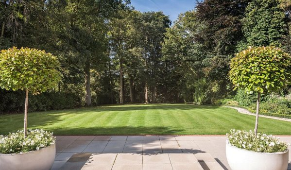 Lawned garden with large trees around the border
