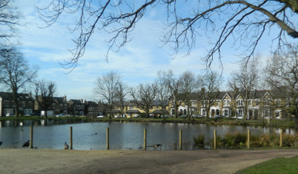 St John's Pond in Buckhurst Hill