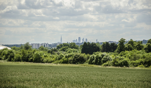 London skyline from Chigwell Rise