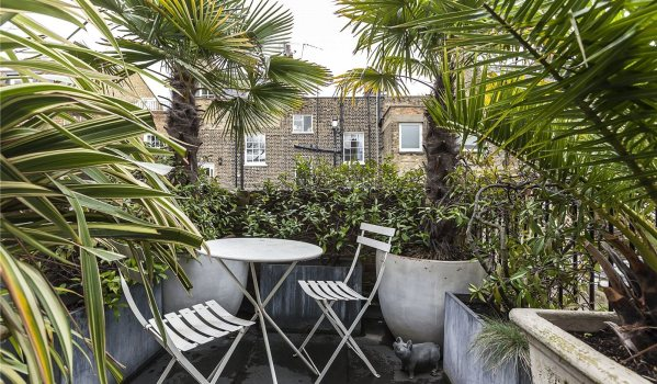 Small London roof terrace full of tropical plants