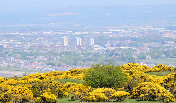 View over Ayr from Carrick Hill