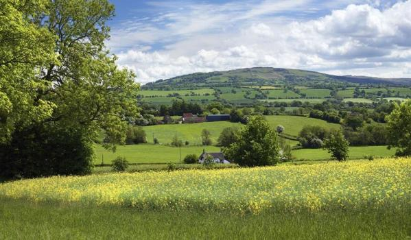 Rolling countryside in Shropshire