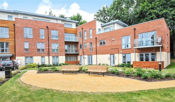 Modern flats for rent