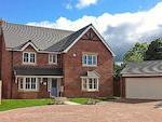 Seddon Homes - Hammond Rise image